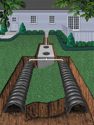 Septic Tank Everything that goes down any of the drains in